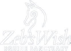 Zeb's wish