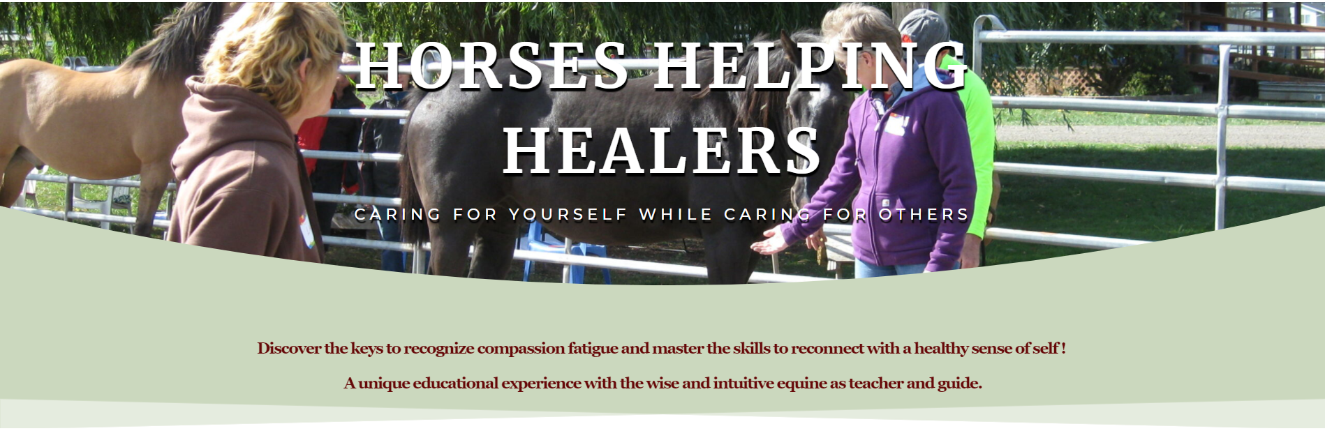 Horses Helping Healers